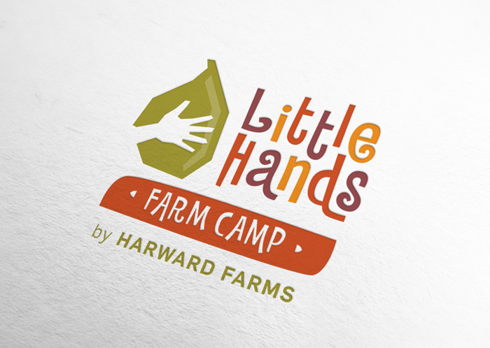 Little Hands Farm Camp